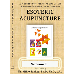 Esoteric Acupuncture DVD Vol. 1 One Disc